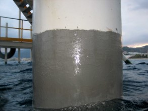 Above and below water coated with Belzona 5831 (ST-Barrier)